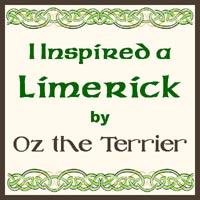 limerick inspiration