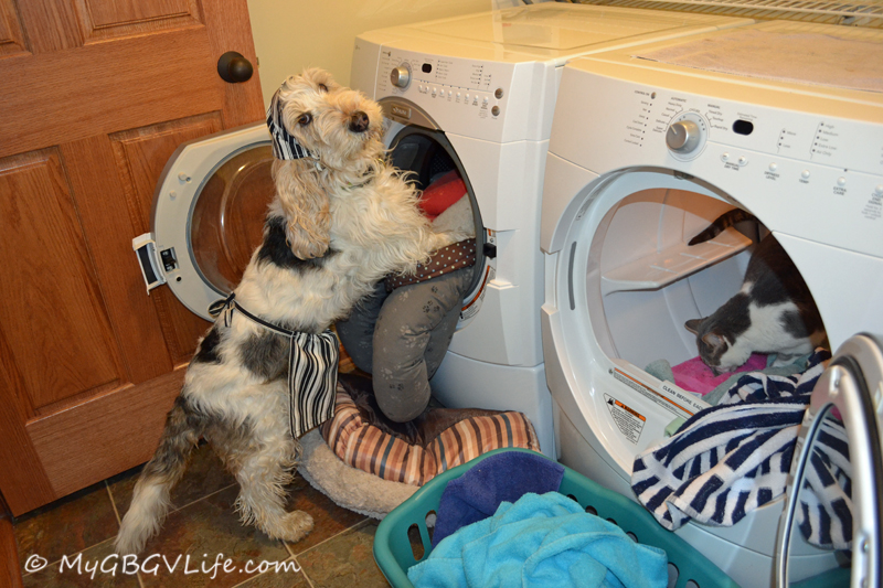 So much laundry is a real project!