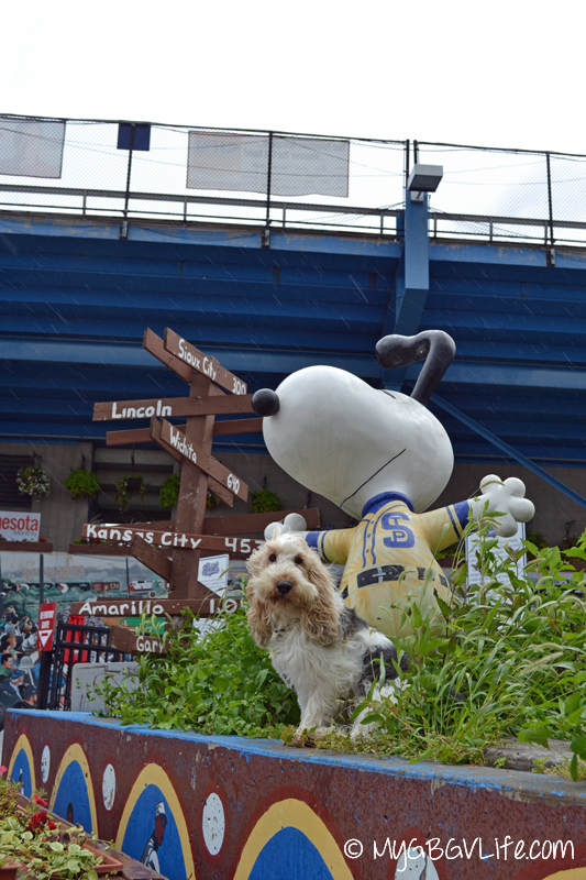 GBGV Saints Snoopy