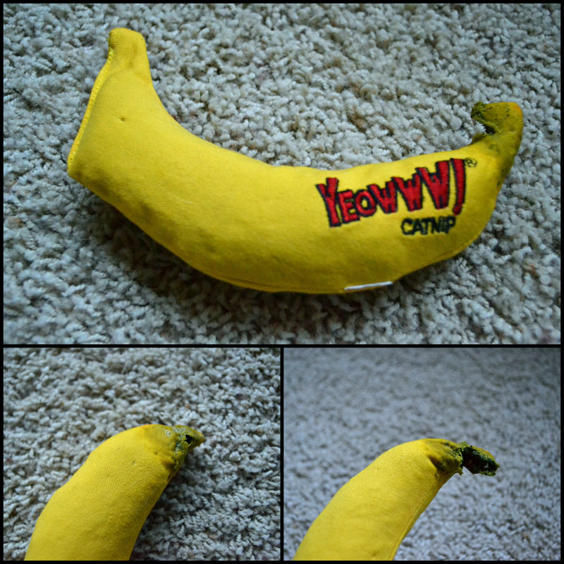 How To Kill A Banana In Under 5 Minutes