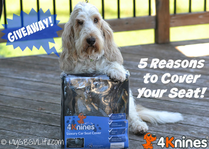 5 Reasons To Cover Your Seat {Giveaway}
