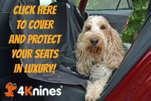 GBGV 4Knines luxury seat covers