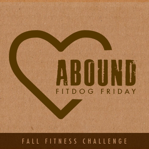 Fall Fitness Challenge with FitDog Friday