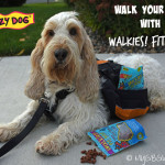 Don't Walk Your Dog Without Walkies