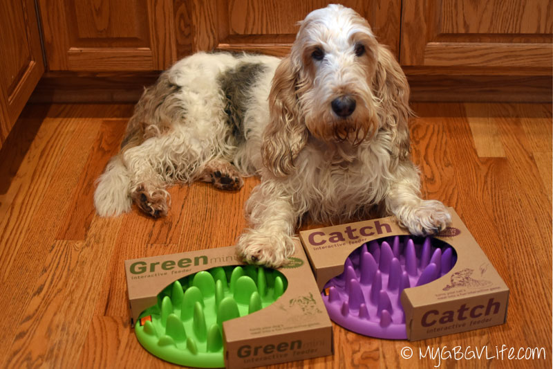 Emma S Top 10 Howliday Gift Suggestions For Fit Dogs My