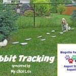 Wabbit Tracking – Join This Pawlympic Event Hosted By My GBGV Life