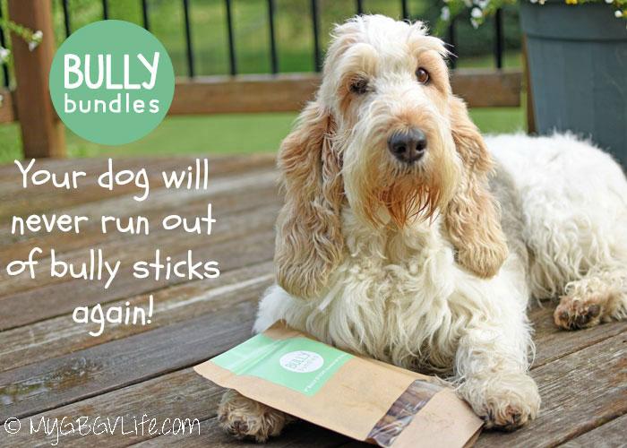Bully Bundles – Never Run Out Of Bully Sticks Again!