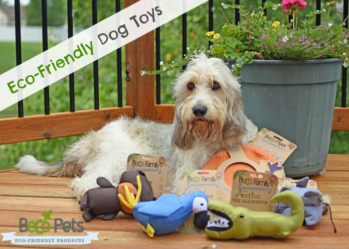 Irresistible, Durable, Fun Dog Toys Your Pup Will Love