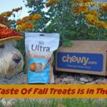 The Taste Of Fall Snacks Is In The Air #ChewyInfluencer