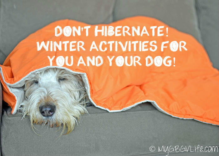 Don't Hibernate! 5 Winter Activities For You And Your Dog