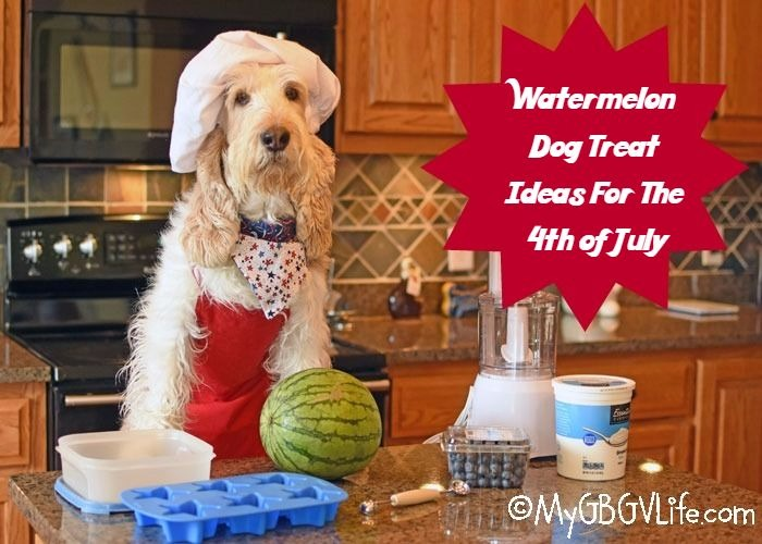 Watermelon dog treat ideas for the 4th of july my gbgv life for Is it safe for dogs to eat watermelon