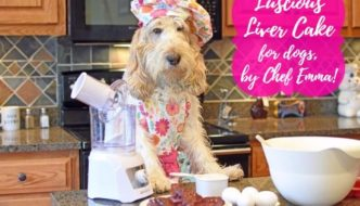 Luscious Liver Cake For Dogs, By Chef Emma!
