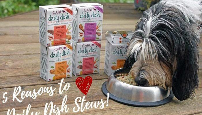 My GBGV Life 5 Reasons To Love Daily Dish Stews