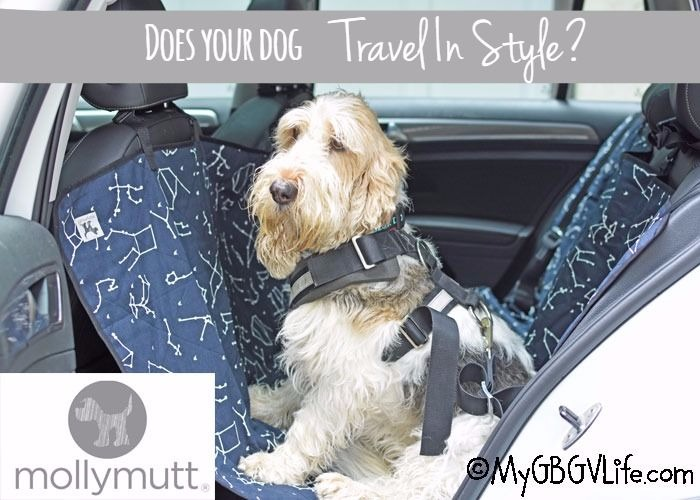 Does Your Dog Travel In Style? She Sure Can With Molly Mutt! {Giveaway}