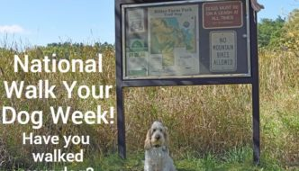 Checking Out Ritter Farm Park For National Walk Your Dog Week