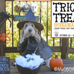 Creep Through A Tight Tunnel – Trick Or Treat Giveaway Hop 2017
